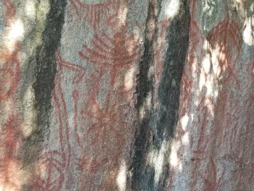5. Petroglyph